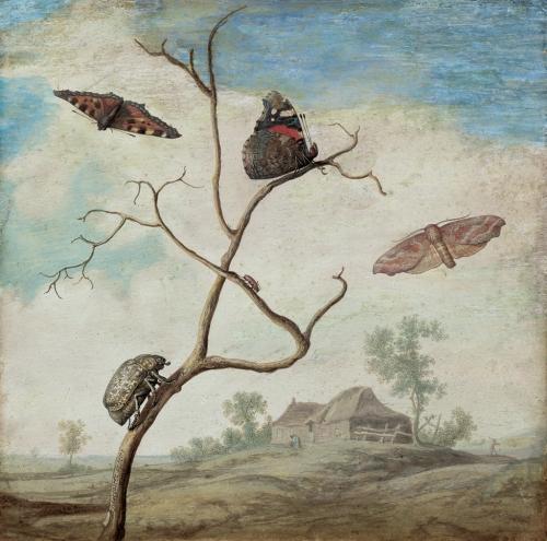 Margareta de Heer ~ A beetle on a branch ...